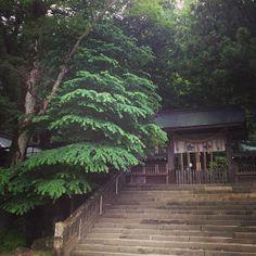 諏訪大社上社本宮 Japanese Temple, Japanese Style, Spaces, Detail, House Styles, City, Travel, Japan Style, Viajes
