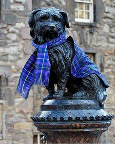 The statue of Greyfriars Bobby wearing a tartan scarf   Edimburgh