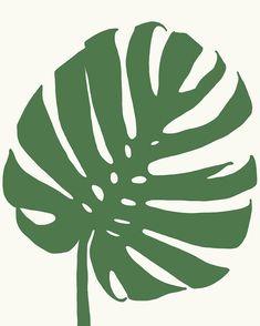 Tropical Plant Leaf by jorey hurley