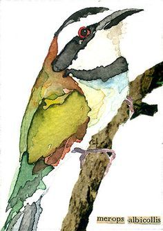 watercolor ibis | ACEO ORIGINAL WATERCOLOR ART CARD BIRD [Bee-Eater] - Carol Kroll Art