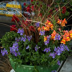 Fall container gardening picture of fall planter with snapdragons that look like candy corn | Photograph © Kerry Michaels