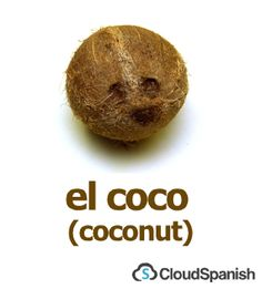 el coco (coconut)