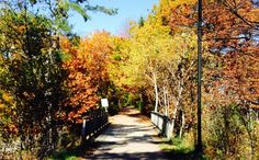 Fitness Trail in the Fall