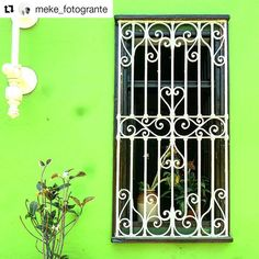 Metal Words, Modern Window Design, Cute House, Iron Doors, Front Yard, Window Grill Design, Window Design, Iron Gate Design, Iron Gate