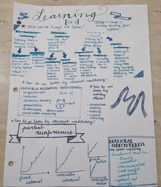 shaestudies:  May 19, 2015  Did some revision for psychology // inspired by pensandmachine and reviseordie