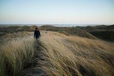 Hiking on dunes Sunset over Denmark beach #dunes #sea #denmark #roadtrip #nature #naturephotography #photography #travel #travelling #nikon