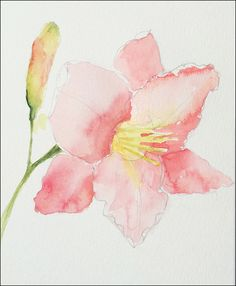 In this case, I put down a few light washes of color over the entire flower. The main petals are a single color wash, fading in and out as the water ...