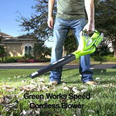 Best Cordless Leaf Blower 2018 and Buying Guide