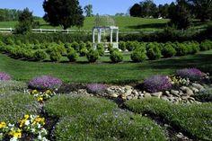 Bill & Ginger Baxter's gardens near Fountain City, TN