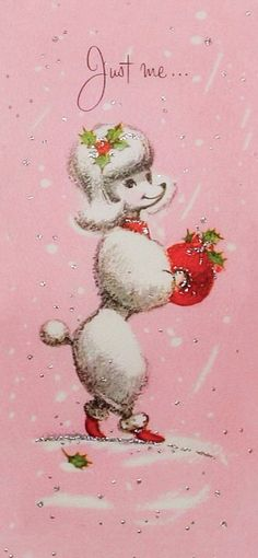 Just a pretty poodle at Christmas.