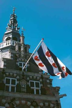 Friesland Flag ~ I always thought that these were hearts...wrong. They're lily pads!