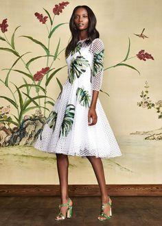 Scopri Dolce & Gabbana Collezione Donna Autunno Inverno 2016 2017 Giardino Botanico e lasciati ispirare.