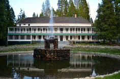 Big Trees Lodge (Yosemite National Park, CA) - Hotel Reviews - TripAdvisor