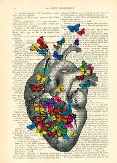 Corazón y Mariposas