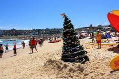 15 Reasons to Pack Your Bags and Move to Australia Now Summer Christmas, Tropical Christmas, Christmas Vacation, Christmas Trees, White Christmas, Vacation Places, Vacation Destinations, Christmas In Australia, Australian Continent
