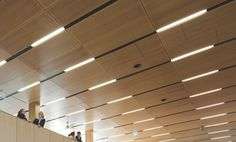 acoustic PANELED ceiling panels and timber - Google Search