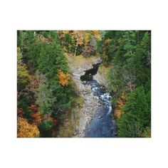 Fall At Quechee Gorge Vermont