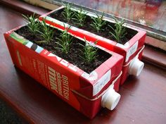 Using these juice or milk carton's are great for seeds and cuttings, require very little watering, and if you do over water you can just open the plastic cap to let the excess water drain.