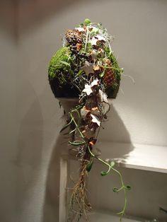 Weihnachtliches Objekt 2014 Design: Hansjörg Renner, Blumen Renner Lörrach repinned by www.landfrauenverband-wh.de #landfrauen #landfrauen wü-ho