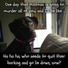 5 years, same mailman.  Indy still barks.... Takes her job seriously.