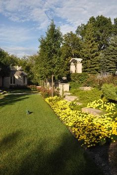 """Rock garden""""  """"Some flowers with shrubs""""  """"Love the yellow flowers""""  """"Yellow flowers...Garden idea...Front flowers"""