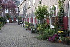 Geveltuinen in 's-Hertogenbosch