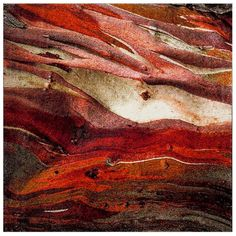 SAFAVIEH Glacier Bree Modern Abstract Rug - On Sale - Overstock - 11724988 - 9' x 9' Square - Red/Multi Natural Contour, Natural Beauty, Polypropylene Rugs, Tie Dye Designs, Throw Rugs, Rugs Online, Online Home Decor Stores, Contemporary Style, Modern