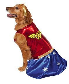 Big Dogs Wonder Woman Dog Costume, XX-Large Rubie's Costume Co http://smile.amazon.com/dp/B00WBBHK4U/ref=cm_sw_r_pi_dp_kHUIvb1Q3ZAS7