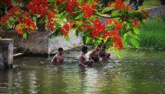 Ann Fernandez Photography © #annfernandezphotography  #India #Kerela @Cochin