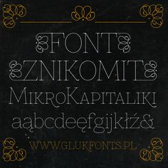 Ultra- thin and thin Slab serifs have become  more popular recently. Here is one I enjoy called Znikomit. I am currently using this typeface for a project right now.