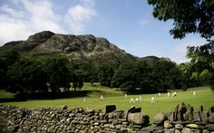 In pictures: idyllic country cricket - Telegraph