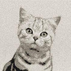 Grey cat photo stitch free embroidery design - Photo stitch embroidery designs - Machine embroidery community