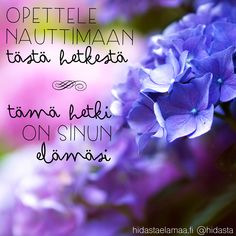 Tämä hetki on sinun elämäsi. Motivational Quotes, Inspirational Quotes, Enjoy Your Life, Beautiful Mind, How I Feel, Peace Of Mind, Funny Texts, Wise Words, Grateful