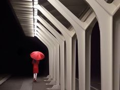 Lady in Red, captured at the Mediopadana Train Station in Reggio Emilia, Italy by Davide U., submitted to National Geographic. Amazing.