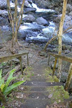Crystal Cascades  Cairns, Australia