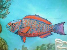 Closeup Parrot Fish