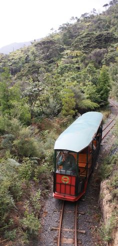 We decided on going to Driving Creek Railway which is a tourist attraction for trainspotters in Coromandel Peninsula, NZ