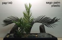 sago palm plastic.  freshwater aquarium or reptile environment plant.   or, you can toss it in a potted container for a no care house or office plant.  www.ronbeckdesigns.com