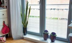 Mit Klebefolie können die Nachbarn nicht mehr einfach so in die Wohnung schauen. Außerdem kann das Fenster damit sehr schick aussehen.
