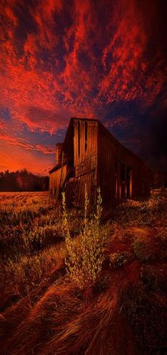 """""""There Was A Time"""" Milwaukee, Wisconsin Horizons by Phil Koch USA"""
