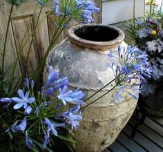 In keeping with European styles, treat well-designed vessels as statues, not always filling them with plants.  Outdoors, try using them to frame a vista, define a patio, or mark a pathway.  Inside, willow twigs or budding branches compliment the amphora�s scale and shape.