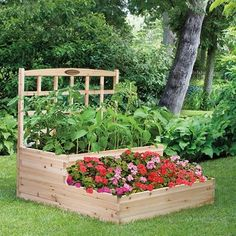 Amazon.com: Cedar Tiered Raised Garden Bed with Trellis: Patio, Lawn & Garden
