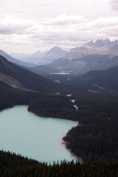 peyto lake from bow summit, banff national park, ab | Flickr