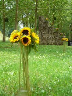 grand bouquet de tournesol