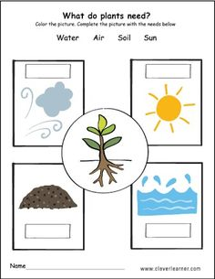 New plants kindergarten crafts classroom ideas Science Worksheets, School Worksheets, Super Worksheets, Plant Song, Plant Lessons, Planting For Kids, Preschool Garden, English Worksheets For Kids, Plant Science