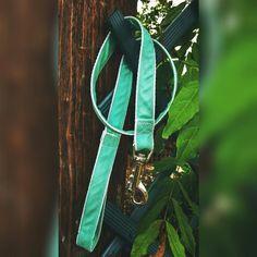 Perro: Correas de tela - Correa aguamarina - hecho a mano por Letsbag en DaWanda