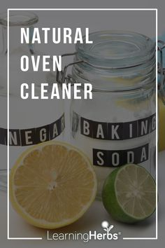 Natural Cleaning Recipes: Natural Oven Cleaner Natural Cleaning Recipes, Natural Cleaning Products, Natural Oven Cleaner, Herbs For Health, Healing Herbs, Medicinal Plants, Healthy Drinks, Healthy Recipes, Herbal Medicine