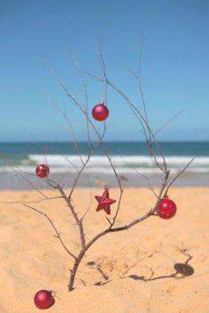 Christmas on the beach My next Christmas tree !