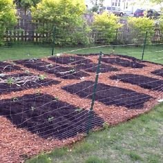 No till gardening...layer wet newspaper over your grass.  Then, a layer of mulch.  Then, a soil bed on top for all for favorite veggies