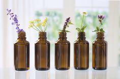 Schnu1 - Kräuterhexe: Mit Aromatherapie gegen Kopfschmerz, Nervosität un...